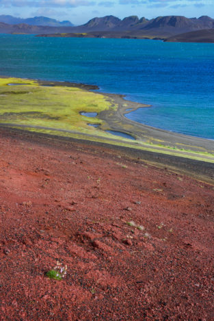 Rote Erde am Kratersee Litlisjor, Veidivötn, Hochland, Südisland, Island, Europa * Red soil at crater Lake Litlisjor, Veidivötn, Highlands, Southern Island, Iceland, Europe