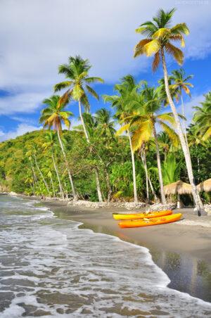 Karibik - Palmenstrand auf St. Lucia