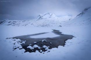 Schweiz - Moorsee mit Faulhorn und Reeti, Grindelwald