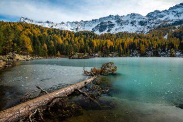Schweiz - Lagh da Saoseo im Herbst, Val da Camp