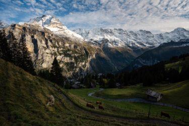 Schweiz - Alm mit Eiger, Jungfrau und Mönch, Mürren