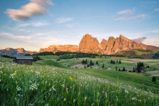 Dolomiten: Frühjahr auf Seiser Alm (Alpe di Suisi), Südtirol