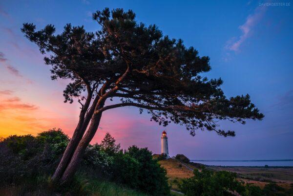 Insel Hiddensee, Leuchtturm am Dornbusch